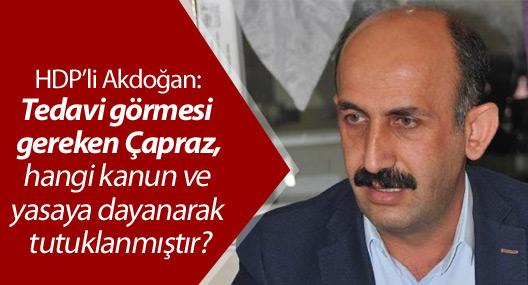 HDP'li Akdoğan, Çapraz'ın tutuklanmasını Meclis'e taşıdı