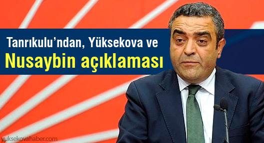 'Cizre'deki hukuk dışılık Yüksekova ve Nusaybin'de de yürütülebilir'