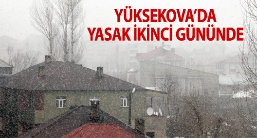 Yüksekova'da yasağın ikinci günü: Çatışmasız, Kar yağışlı