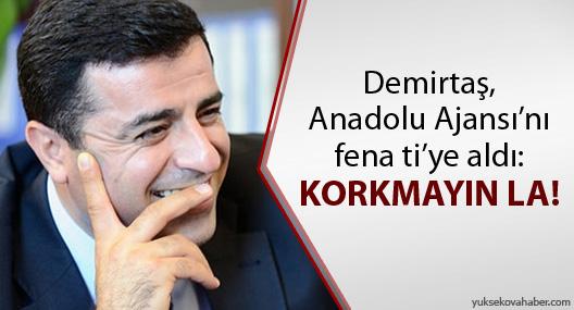 Demirtaş, Anadolu Ajansı'nı fena ti'ye aldı