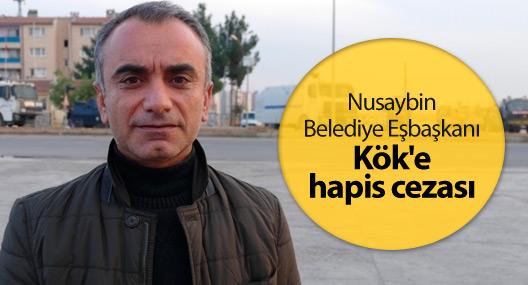 Nusaybin Belediye Eşbaşkanı Kök'e hapis cezası