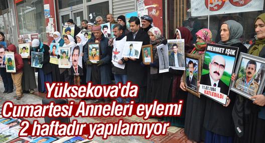 Yüksekova'da Cumartesi Anneleri eylemi 2 haftadır yapılamıyor