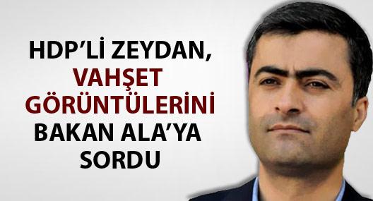 HDP'li Zeydan, vahşet görüntülerini Bakan Ala'ya sordu