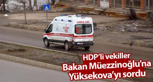 HDP'li vekillerden Bakan Müezzinoğlu'na Yüksekova soruları