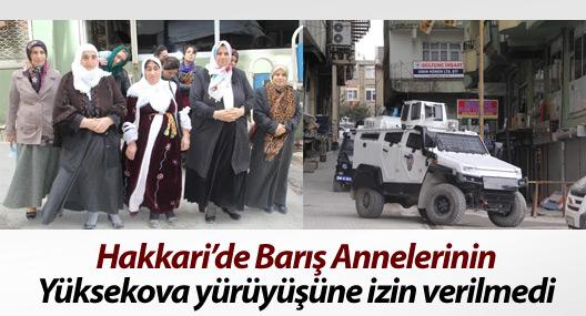 Barış Annelerinin Yüksekova yürüyüşüne izin verilmedi