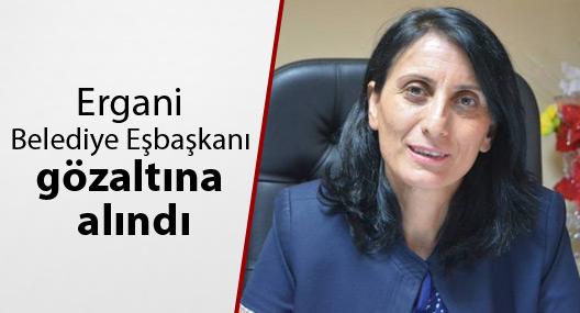 Ergani Belediye Eşbaşkanı Taşkın gözaltına alındı