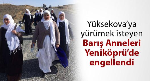 Yüksekova'ya yürümek isteyen Barış Anneleri, Yeniköprü'de engellendi