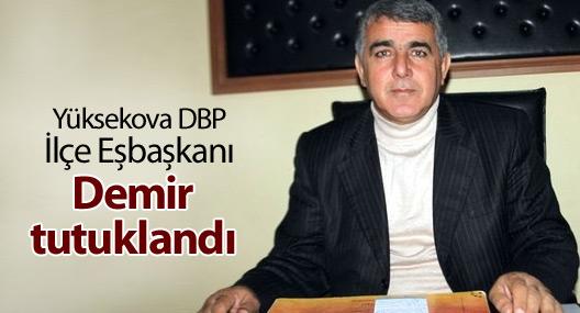 Yüksekova DBP İlçe Eşbaşkanı Demir tutuklandı