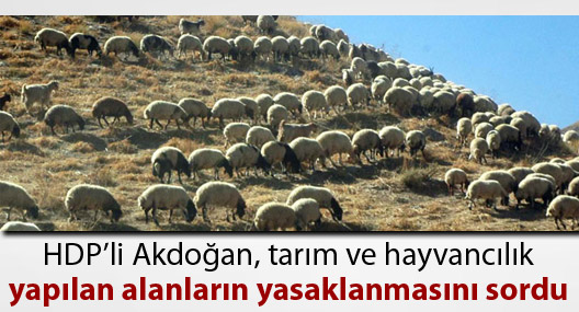 HDP'li Akdoğan tarım-hayvancılık alanlarının yasaklanmasını sordu