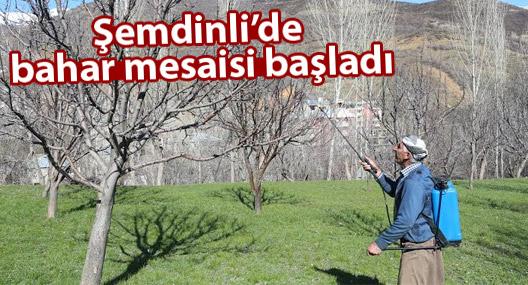 Şemdinli'de bahar mesaisi başladı