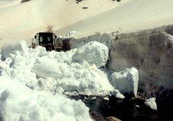 Nisanda karla mücadele