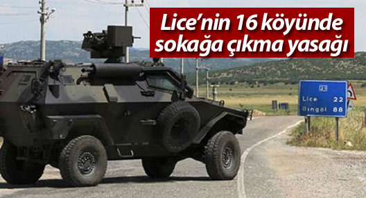 Lice'nin 16 köyünde sokağa çıkma yasağı