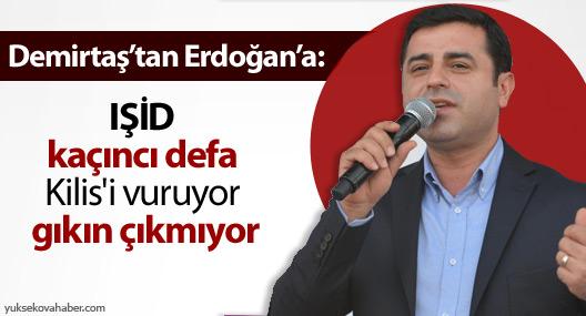 Demirtaş'tan Erdoğan'a: IŞİD Kilis'i vuruyor gıkın çıkmıyor