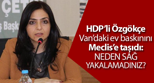 HDP'li Özgökçe: Neden sağ yakalanmadınız?