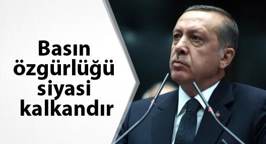 Erdoğan: Basın özgürlüğü siyasi kalkandır