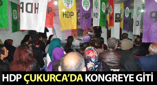 HDP Çukurca'da kongreye gitti