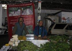 GDO'lu üretime karşı doğal üretim