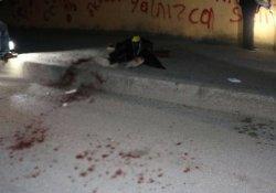 Biçerdöver kavgasında 2 kardeş öldü
