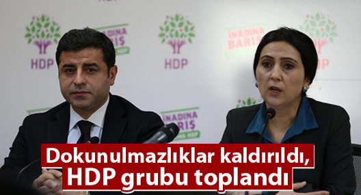 HDP, kararı değerlendirmek üzere toplandı