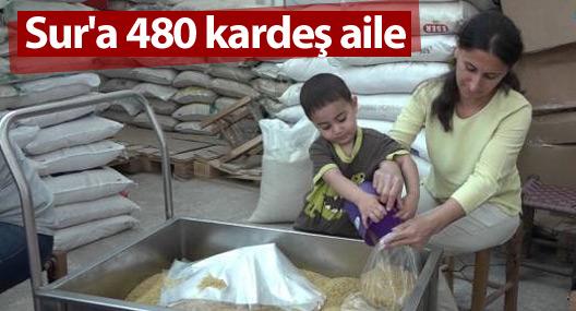 Sur'a 480 kardeş aile