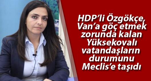 HDP'li Özgökçe, Van'a göç etmek zorunda kalan Yüksekovalıları Meclis'e taşıdı