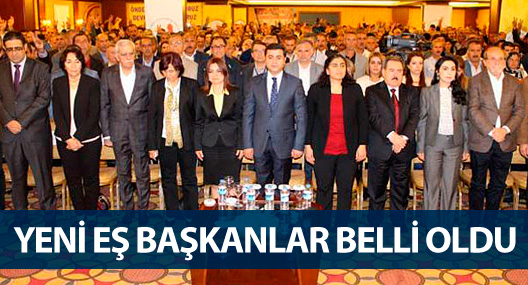 DBP'de yeni eş genel başkanlar belli oldu