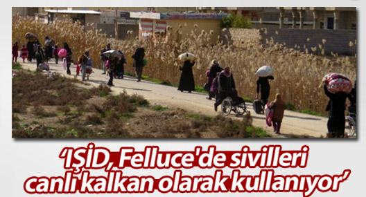 BM: IŞİD, Felluce'de sivilleri canlı kalkan olarak kullanıyor