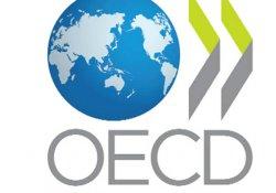 OECD Türkiye tahminlerini yükseltti