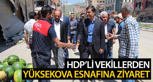 HDP'li vekiller iş yerlerini açan Yüksekova esnafını gezdi