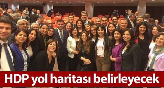 HDP yol haritası belirleyecek