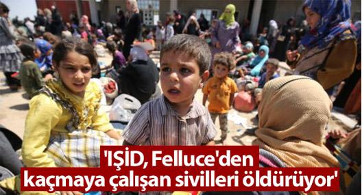 'IŞİD Felluce'den kaçmaya çalışan sivilleri öldürüyor'