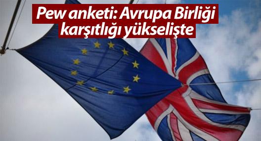 Pew anketi: Avrupa Birliği karşıtlığı yükselişte