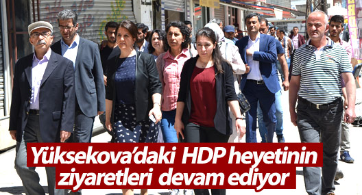HDP heyeti STK ve esnafı ziyaret etti