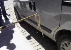 Aracın tekerleğine yılan girdi
