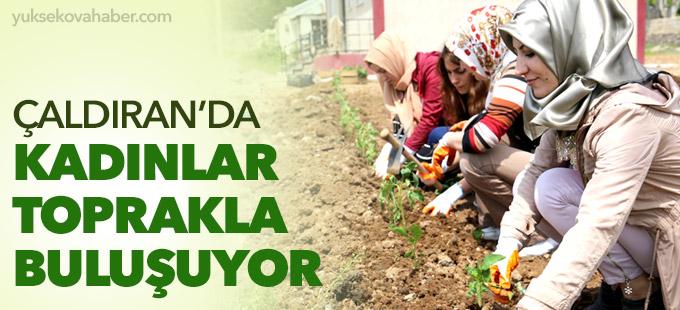 Çaldıran'da kadınlar toprakla buluşuyor