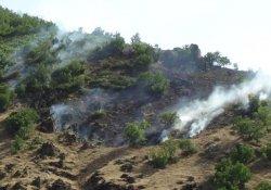 Şemdinli'de top atışları yangına sebep oldu