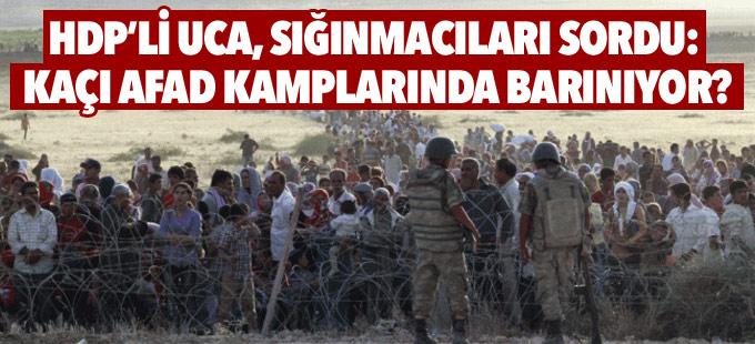 HDP'li Uca, sığınmacıları sordu: Kaçı AFAD kamplarında barınıyor?
