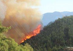 Kumluca'daki orman yangını tekrar başladı