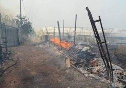 Yangın rüzgarın etkisi ile yayılıyor