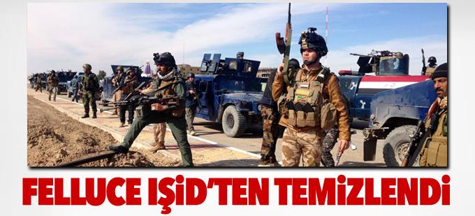 Iraklı komutan: Felluce savaşı bitti