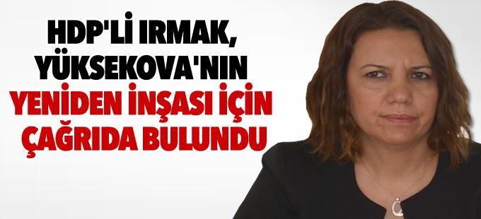 HDP'li Irmak, Yüksekova'nın yeniden inşası için çağrıda bulundu