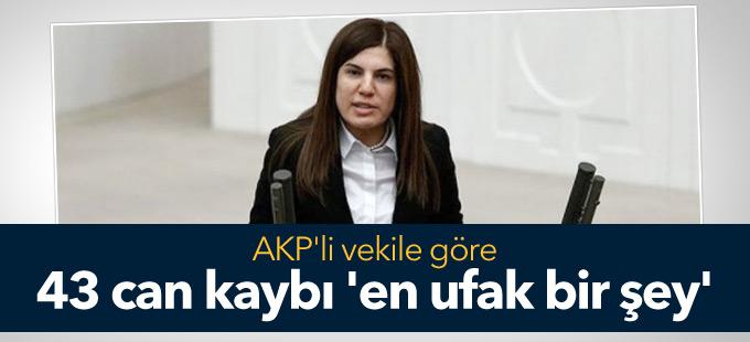 AKP'li vekile göre 43 can kaybı 'en ufak bir şey'