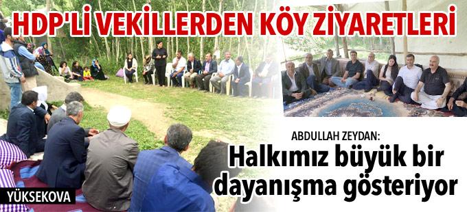 HDP'li vekiller Yüksekova'ya bağlı köyleri ziyaret ediyor