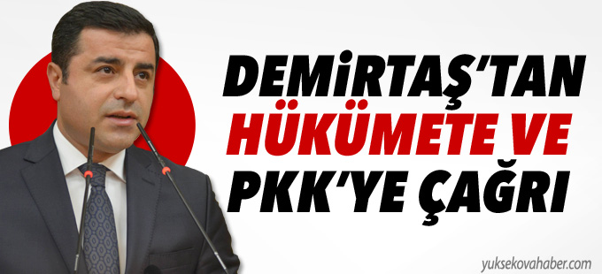 Demirtaş'tan hükümete ve PKK'ye çağrı