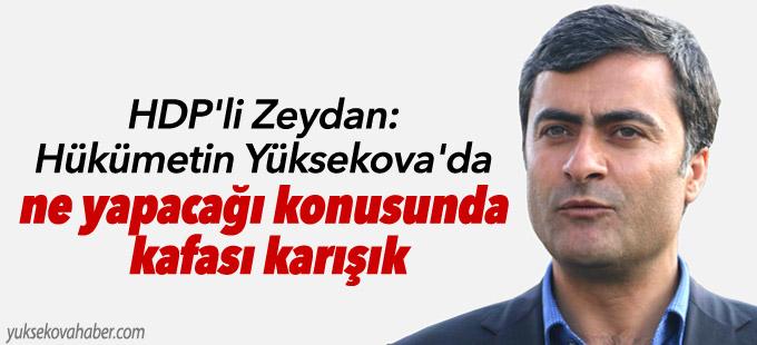 HDP'li Zeydan: Hükümetin Yüksekova'da ne yapacağı konusunda kafası karışık