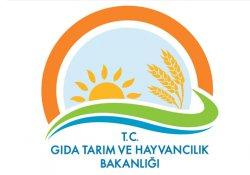 Gıda Tarım ve Hayvancılık Bakanlığı'nda bin 379 personel açığa alındı