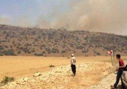 Silvan'da tarım arazilerinin yakılması Meclis gündemine taşındı