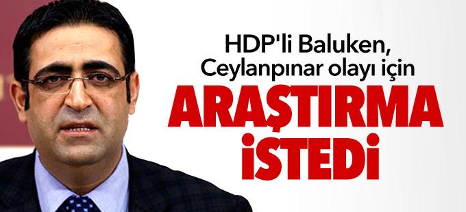 HDP'li Baluken, Ceylanpınar olayı için araştırma istedi