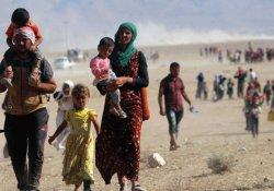 Türkiye'deki Ezidilere 'mülteci statüsü' talebi