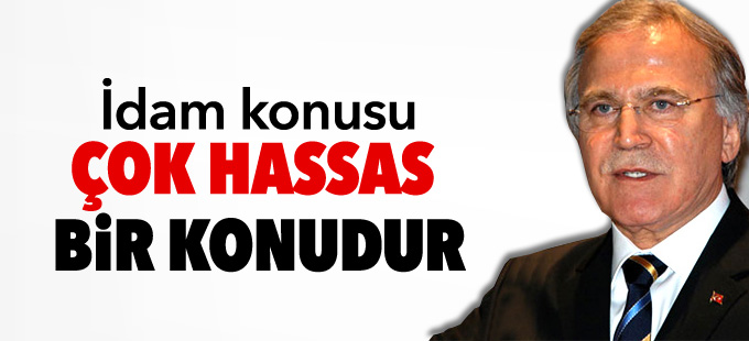 AKP'li Şahin: İdam konusu çok hassas bir konudur
